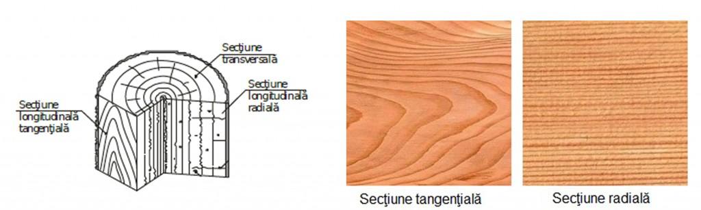 lemn stratificat sectiuni
